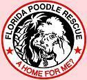 Florida Poodle Rescue