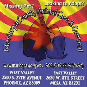 Maricopa County Animal Care & Control, Phoenix, AZ