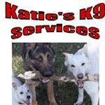 Rspca Dorset Dog Rescue